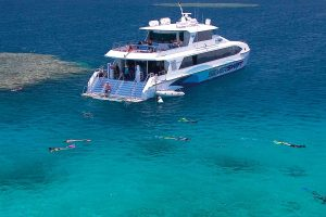 dream-package-reef-raft-hostel-cairns